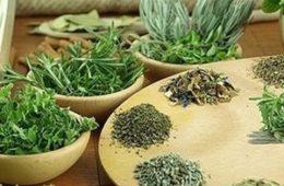 Терапия травами