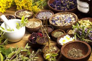 Фитотерапия - один из методов лечения